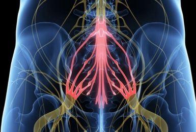 Hội chứng đuôi ngựa - Triệu chứng, Nguyên nhân, Biến chứng và Điều trị