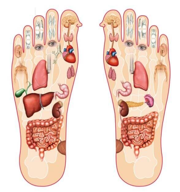 Bấm huyệt chân chữa nóng trong